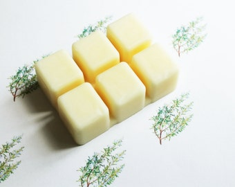 Rosemary Scented Melts - Natural Vegan Soy Wax - Soy Candles - Soy Wax Melts - Soy Tarts