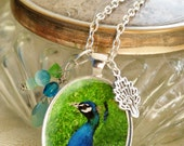 Stunning peacock pendant and charm necklace with delightful details