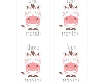 Milestone Monthly Onesie Stickers Baby Zebra Motif
