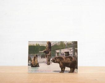 Vintage Postcard Art Block 'Stanley Park Bears' - Canadiana, British Columbia, image transfer