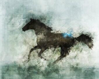 Lone Star 07: Giclee Fine Art Print 13X19
