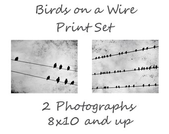 Birds on a Wire Photography Set, 2 Two Birds on Wire Black and White Set, Black birds Nature Photo Set 8x10 and up