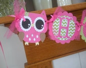 Owl Open Eyed Hot Pink Green Happy Birthday Banner Photo Prop Matching Tissue Pom Poms Are Available