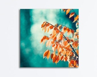 "Teal Orange Canvas Gallery Wrap - turquoise aqua print nature blue branches modern colorful botanical rust photography wall art, ""Embrace"""