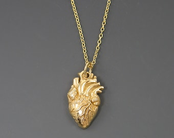 Anatomical Heart Necklace, Gold Plated Bronze Heart Pendant with 14KT Gold Filled Chain |NG1-11