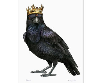 Three Eyed Raven in a Game of Thrones Crown - A3 Print