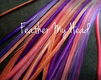 """16 Pc Pink Whiting Euro Feather Hair Extension 9""""-12"""" (23cm -30cm) Long, Sweet Peony"""