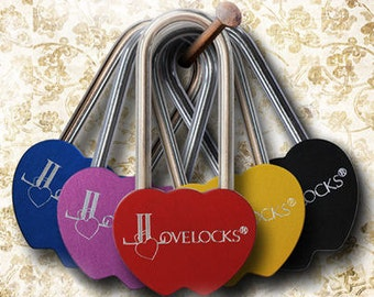 Colored Double Heart Shaped LoveLocks