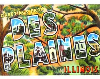 Greetings from Des Plaines Illinois Fridge Magnet