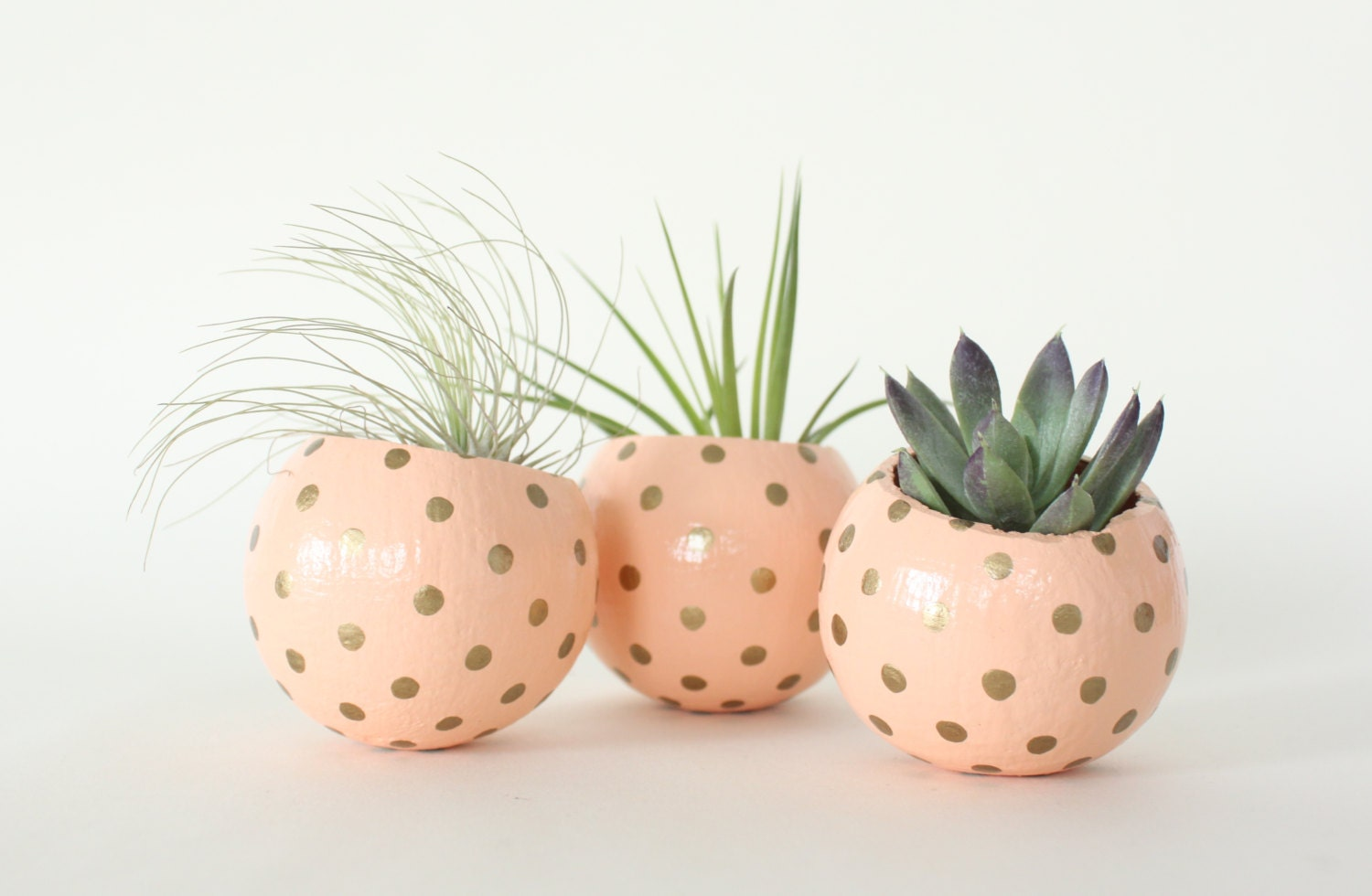 Peach gold air plant planter pod hand painted air plant for Air plant planters