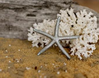 Beach Decor Silver Starfish Painted Starfish - Beach Wedding Decor, Painted Starfish, Starfish Nautical Decor, Natural Starfish, Starfish