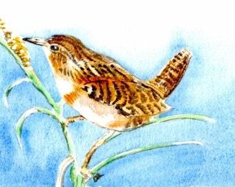Painting-Watercolor-Wren-Bird Art-Nature Art-Original Art