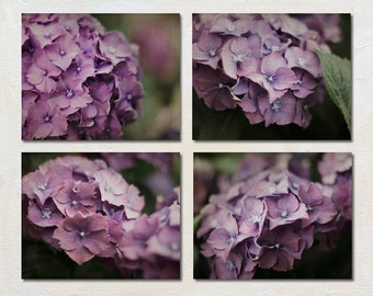 Green and Purple Photography Set, Four 8x10 Photographs, 4 Flower Print Set, Livingroom Wall Decor, Nature Photography, Feminine Picture Set