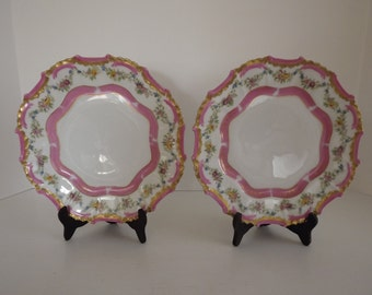 Vintage Tressemann & Vogt, Limoges Pair Of Plates, Pink Gold Floral Garland, Hand Painted, Made in France, Home Decor, Circa 1892-1907