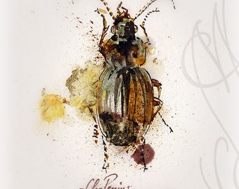 """Martinefa's Original watercolor and Ink - """" Insect #6"""""""