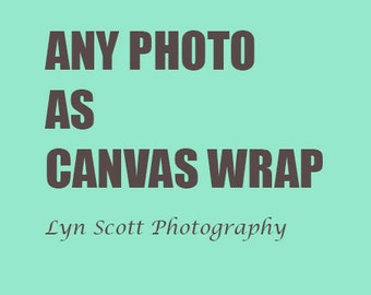 Art on Canvas, Canvas Wrap, Various Sizes and Edge Colors, Nature Photography, Gift, Fine Art, Wall Art, Canvas, Home Decor