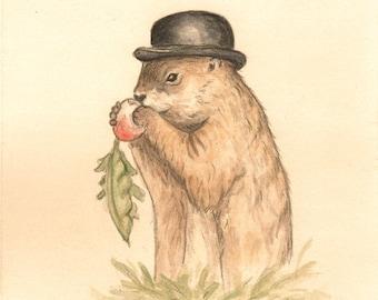 Diggery Print 8x10 -  portrait, groundhog, bowler, derby, hat, painting, illustration, woodland, rustic, gentleman, turnip, forest, nursery