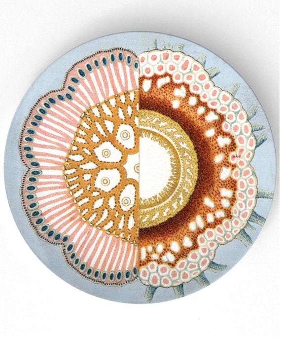 Sea  Life II - 1800s illustration melamine plate