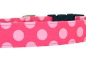 Pink Polka Dot Dog Collar/ Girl Dog Collar: Cotton Candy Dots