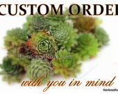 Expedite fee for rush order to bundle with Sempervivum Small order