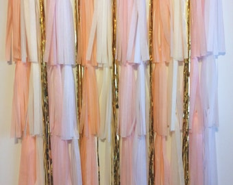 FREE SHIPPING Blush Photo booth backdrop wedding party