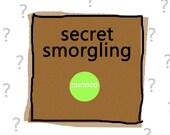 SECRET SMORGLING - 160g / 5.6oz- fibre samples