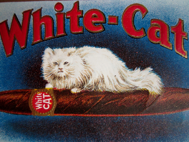 Vintage Unused Embossed Cigar Label White Cat Brand Featuring