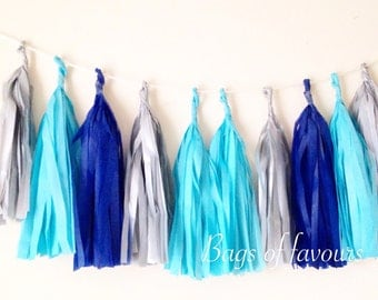 Shades of blue  and silver tassel garland wedding birthday baby shower