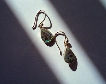 Abalone Oceans Teardrop Earrings