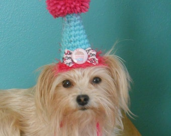 Dog or Cat Birthday Party Hat  Mint Green and Hot Pink Crocheted  X Small with Cupcake Button
