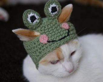 Frog Hat for Pets