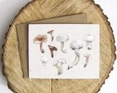 Mushroom Notecard