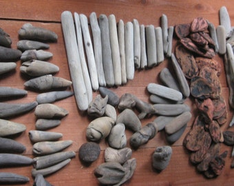 Driftwood Collection