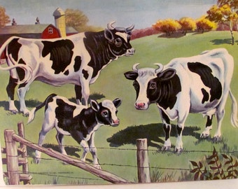 Vintage Bull, Cow, and Calf Poster