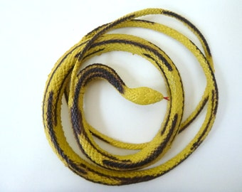 Black & Yellow Rubber Snake -- Coiled