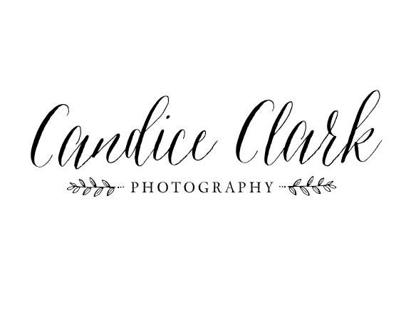 Calligraphy photography logo premade