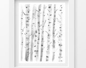 "Birch Trees, 5""x7"",Watercolor Painting, Art Print Watercolor Print, Black and White Art Print, Silver Birches, Soft Delicate Watercolor Art"