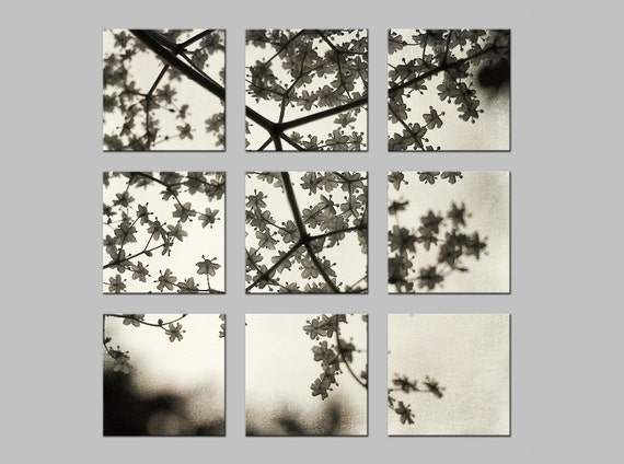 Nine Metal Prints. FREE SHIPPING. Spring Tree Blossoms. Flowers. Tic Tac Toe Photo Split. Dreamy Nature Photography by OneFrameStories.