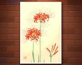 Japanese art, Flowers floral plants botanical art prints, posters, Red Spider Flower, Grevillea FINE ART PRINT, japanese woodblock prints
