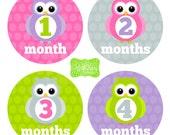 Owl Baby Monthly Stickers - Baby Bodysuit Stickers - Monthly Baby Stickers -Girl Monthly Stickers - 017