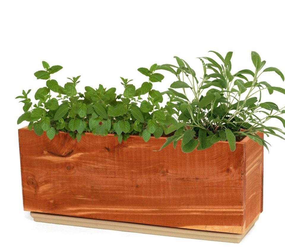 Windowsill Herb Planter: Windowsill Herb Planter Planter Box Cedar By GrindstoneDesign
