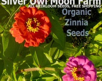 Zinnia, Lilliput Mixed colors, Heirloom flower seeds