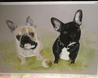 beige french bulldog and Black 50x65cm size