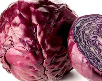 the effect of red cabbage in Mildly spicy with a strong vegetal taste, red cabbage is associated more with soup and coleslaw than with juice however, this nutrient-packed vegetable.