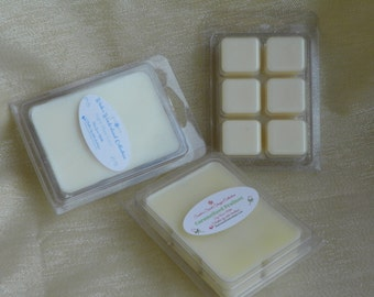 SALE! Blueberry Cheesecake Soy Wax Candle Breakaway Melts Recloseable Package