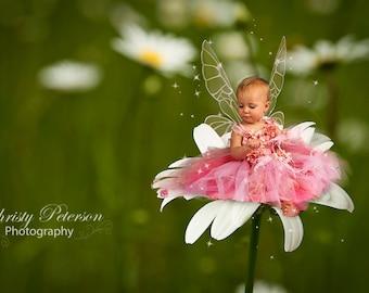 Daisy Digital Background for Fairy Photography Composites