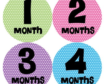 Monthly Baby Stickers Baby Month Stickers Baby Girl Month Stickers Monthly Photo Stickers Monthly Milestone Stickers 195