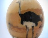Decoupage ostrich egg: The ubiquitous ostrich in all of its plumed glory struts it stuff on the front of this unique African decor item