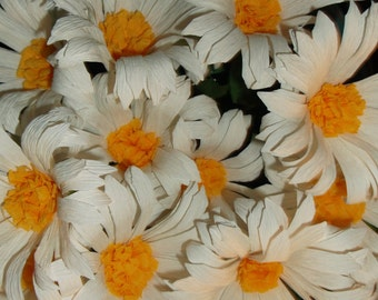 1.50 each, 12 White Crepe Paper Daisies, Paper Flowers, Wedding, Baby Shower, BIrthday, Paper Decorations, Paper Daisies, Paper Decoration