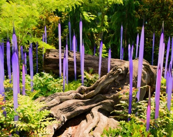 Chihuly Glass and Flower Garden, Purple Glass, Logs and Ferns